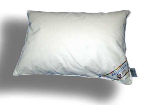 Zwerglein 4 - Stege - Bett - 80x80 -60% Daunen / 40% Federn
