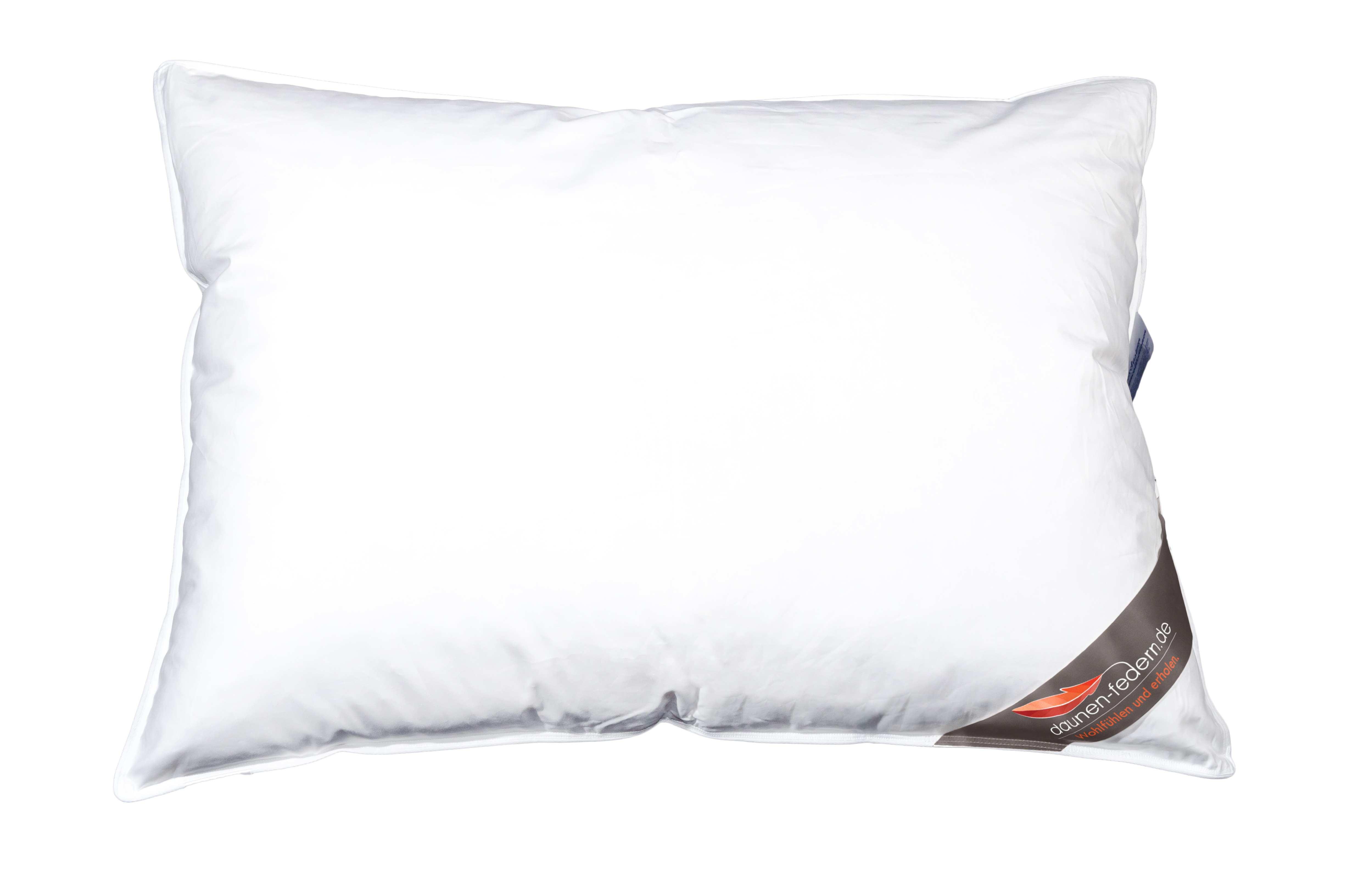 daunenkissen federkissen kopfkissen 60x80 100 federn. Black Bedroom Furniture Sets. Home Design Ideas